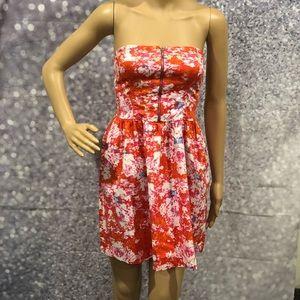 Zara Trafaluc Collection Dress M
